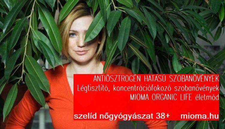 szobanovenyek_mioma.hu